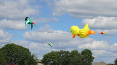 Kite Fest 2015 - Inflated Kites
