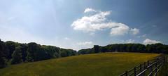 Buttercups (Worthing Wanderer) Tags: devon okehampton railway railtrail lswr may sunny spring dartmoor