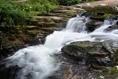East Lyn river (yulepasta) Tags: nationaltrust watersmeet river stream waterfall