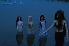 Midsummer night's magic (Morlynx) Tags: bjd lleu isabel