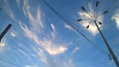 Goodbye blue sky! (Baustelle88) Tags: goodbye blue sky colors clouds nature seagull citylight naples