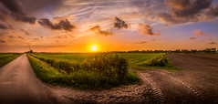 Another Sunset (D.ROS) Tags: 2016 blue cloud dark dike field flat grass green light meadow netherlands orange polder road schagen sun sunset yellow supershot 3xp