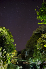 Nature & Stars (Laph95) Tags: sky stars ciel toiles nature outside outdoor extrieur parc trees arbres vert green astro night nuit colors magic