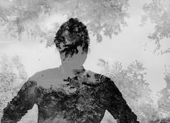 Narciso (Greta Guidotti) Tags: narciso riflessi acqua water
