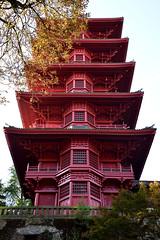 Tour Japonaise de Bruxelles (art'now photography) Tags: tour japonaise d750 nikon