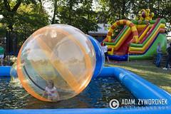 "adam zyworonek fotografia #fotograf wesele3#lubuskie,zagan#slubna fotografia • <a style=""font-size:0.8em;"" href=""http://www.flickr.com/photos/146179823@N02/29361478471/"" target=""_blank"">View on Flickr</a>"