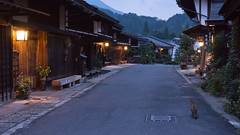 Daily routine (k n u l p) Tags: cat old street dusk night tsumago juku nagano japan sony nex7 sel1670z 1670mm