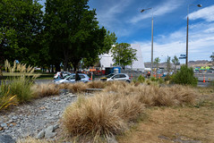 Dry Tussock Grass (Jocey K) Tags: pampasgrass newzealand christchurch archtiecture buildings crane cbd clouds sky tussock toetoe greeningtherubble cars trees cardboardcathedral