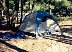 camping / tent / mamiya m645 (bluebird87) Tags: mamiya m645 dx0 c41 epson v600 film kodak ektar 100 cape henlopen delaware