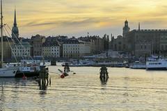 Stockholm i skymning (Anders Sellin) Tags: batic skrgrd sverige sweden vatten sea stockholm stersjn evening skymning gamla stan slott slottsbacken