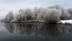 Winter Wonderland (klythawk) Tags: nottingham blue trees winter brown white snow black ice water reflections grey frost january olympus panasonic westlake omd 1445mm em5 colwickpark klythawk