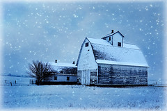 Snowy Corncrib (keeva999) Tags: blue painterly texture abandoned rural nikon farm country barns iowa hss corncrib d3200 hoghouse memoriesbook elementsorganizer