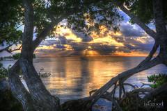 Key Largo morning (jaki good miller) Tags: ocean clouds sunrise dawn florida dramaticsky hdr floridakeys keylargo dovecreeklodge jakigoodphotography keylargosunrise