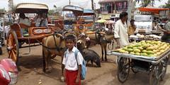 "Marche de Badami market  """" Please View Large"""" (geolis06) Tags: india man women village market femme mango karnataka marche homme inde badami geolis06"