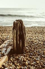 (Damien Cox) Tags: uk sea beach water nikon stones pebbles groin sigma30mmf14exdchsm damiencox d7000 dcoxphotographycom