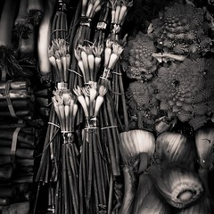 Stalks and  Stems (wordster1028) Tags: blackandwhite bw vegetables greenonions fennel leeks romanesco asparigus lightroom3 kivamarketeugeneor