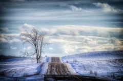 road winter sky snow clouds pentax hiver champs route... (Photo: Sous l'Oeil de Sylvie on Flickr)
