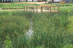 "Lost River Cave Wetland Project • <a style=""font-size:0.8em;"" href=""http://www.flickr.com/photos/22274533@N08/8522739347/"" target=""_blank"">View on Flickr</a>"