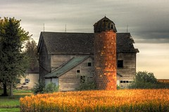 Illinois Barn (david.horst.7) Tags: building barn rural buildings ceramic illinois decay farm il silo