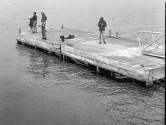 one photographer, four fishermen, dock, float, breakwater, Rockland, Maine, Mamiya 645 Pro, Rollei RXP 400, Ilford Ilfosol 3 Developer, early July 2016 (steve aimone) Tags: photographer fishermen davidaimone dock float breakwater rockland maine midcoast harbor mamiya645pro mamiyasekkor80mmf28 rolleirxp400 ilfordilfosol3developer 120 film
