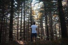 Inner peace (ric_rbn) Tags: guy man portrait portra landscape panorama explore adventure wood forest pines brother freedom youth nikon sun summer sunshine shadows shade mountains italy alps