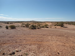 Landscape Near Coober Pedy