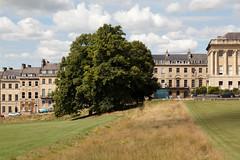 Haw-haw | Royal Crescent | Bath-11 (Paul Dykes) Tags: bath somerset uk england georgian hawhaw tree johnwoodtheyounger horn column 18thcentury eighteenthcentury gradeilistedbuilding