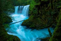 Hydro Power (wuman88) Tags: spirit fall spring foliag moss green pnw washington gorge
