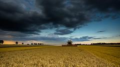 high tech farmer (++sepp++) Tags: acker august clouds feld hochfeld landscape landschaft landschaftsfotografie sommer wolken graben bayern deutschland de germany bavaria field wolkig cloudy mhdrescher combine harvester summer
