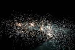 _MG_1233 (sdferrell) Tags: dmt fireworks ny