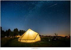 Watching stars fall out of the sky (nandOOnline) Tags: sterrenbeeld perseus sterrenregen ster friesland perseiden nacht vallende sterren camping wad milky way tent moonlight waddenzee wadden meteoriet meteoor moddergat donker meteorieten zee meteoren