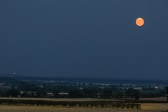 Moonrise over Lincoln Cathedral (deltic17) Tags: moonrise moon orange fullmoon harvest lincoln lincs lincolnshire fields farming evening dusk