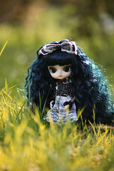 Dal  Melancholic Alice ( ) Tags: melancholic alice dal pulips rival angry outfit chibitotoro ribbon cute lyca ryuno pink eyes rewigged brown hair groove indoor furry canon eos 5d mark ii lens ef 135 mm f 28 softfocus 2 8 soft focus doll largeheaded large big puppet poppet grass bokeh light view tape lace sun smile architecture art asia autumn baby band barcelona black blue bw canada china city outdoor
