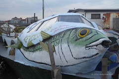 Fish Out of Water (Malcolm Bull) Tags: 20160824fish0002edited1web include shoreham houseboat flying fish
