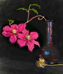 08-27-16 Clematis with Seed Pod (Jeri Mearns) Tags: leaves vase purple clamatis flowers curly blackbackground