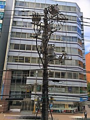 Concrete Tree with Wire Leaves (sjrankin) Tags: 30august2016 edited sapporo hokkaido japan powerpole lines wires transformers