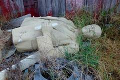 Behind the barn (pburka) Tags: bark junk statue lenin garbage grass overgrown sculpture fallen broken soviet communist
