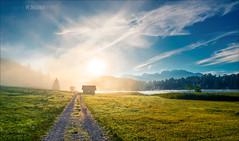 Misty morning (W.MAURER foto) Tags: geroldsee natur nature morning sunrise blue bluesky sonnenaufgang deutschland bayern nebel grn green lake see reise nikond800 tamron tamron1530mmf28