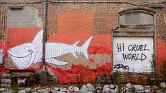 Hi Cruel World (Karissa Selby) Tags: chattanooga grafitti shark hi cruel world