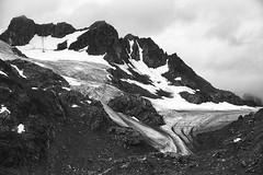 (bon__007) Tags: groenlandia greenland ghiacciaio glacier monochrome mare