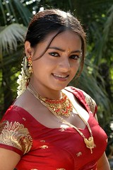 South Actress Madhuchandaphotos Set-3-Hot In Traditional Dress (9)