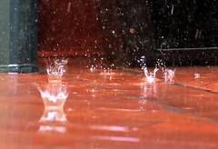 It's raining cats and dogs. (Alfredo Liverani) Tags: canong5x canon g5x europa italia italy italien italie emiliaromagna romagna faenza faventia faience faenza2016 2652016 project project2016 goccia gocce acqua pioggia drop drops water rain