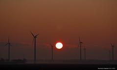 sunrise_6 (raymondklaassen) Tags: winter sunrise nederland 7 flevoland almere kou vorst zonsopkomst wp14012013