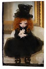 ~ Segwen ~ (~sugarlump~) Tags: vampire elf bjd custom fairyland ante dollheart adad meggilu littlefee