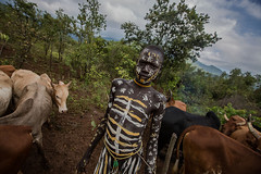 portrait of boy suri tribe with the body painted lead to pasture the herd of cattle (anthony pappone photography) Tags: africa travel portrait white black art face yellow digital canon painting photography facepainting eyes paint artist foto cattle cows faces image expression retrato african painted picture culture unesco clay tribes afrika omovalley ethiopia ritratto surma reportage photograher afrique bambino faccia eastafrica mucche phototravel suri facepainted etiopia etnic whiteclay 非洲 etnico ethiopie etiope etnia argilla bodypainted アフリカ loweromovalley etnica etnologia afryka childrentravel etiopija portraitsofchildren 아프리카 etiopien kibish yellowclay africantribe африка etiopi tulgit अफ्रीका lowervalleyomo