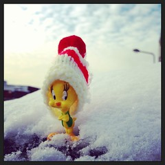 Tweety (Sadat5) Tags: snow cold bird london hat cat toy is am pussy where says tweety woolly yellew chigwell i sadat5 uploaded:by=flickrmobile flickriosapp:filter=nofilter