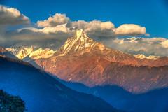 Sunrise over the Annapurna, Nepal (CamelKW) Tags: nepal sunrise trekking day clear annapurna annapurnatrek poonhill mountainpeaks poonhilltrek trekkinginthehimalayas sunriseinthehimalayas ghorepanipoonhilltrek mountainpeaksinnepal