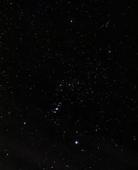 Orion (Guy Wells) Tags: astrophotography Astrometrydotnet:status=solved Astrometrydotnet:version=14400 Astrometrydotnet:id=alpha20130301946219