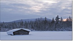 The north Sweden countryside (HJsfoto) Tags: winter nature barn landscape vinter natur lada boden landskap norrbotten