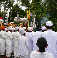 Hindu ceremony in the village . (Franc Le Blanc .) Tags: bali lumix religion praying ceremony traditions panasonic hindu agama upacara